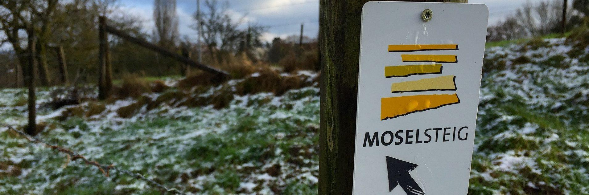"""Read more about the article Drei Thementage mit allen Etappen des Fernwanderwegs """"Moselsteig"""""""